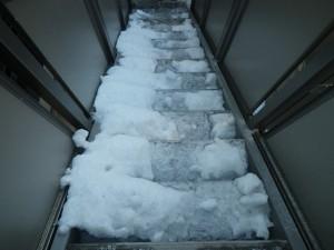 ルピナス階段 作業前